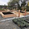 The Raised Bed Garden: Benefits